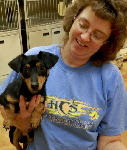 Darlene Foreman, animal caretaker at the Esther Boyd Animal Shelter, holds JJ, a 1-year old chihuahua dachshund mix looking for a new home.  Kaley Toy/Daily